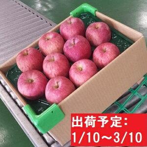 【ふるさと納税】【年明け】津軽産りんご6kg(3kg×2箱)ごいっしょに!!品種お任せ 【果物類・フルーツ・林檎・りんご・リンゴ】 お届け:2020年1月10日〜2020年3月10日