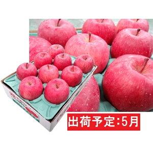 【ふるさと納税】5月 冷た〜い最高級ふじりんご約3kg・特選クラス(有袋栽培)  【果物類・林檎・りんご・リンゴ】 お届け:2020年5月11日〜2020年5月31日