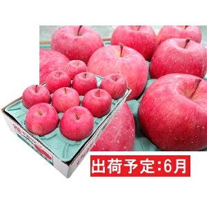 【ふるさと納税】6月 冷た〜い最高級ふじりんご約3kg・特選クラス(有袋栽培)   【果物類・林檎・りんご・リンゴ】 お届け:2020年6月1日〜2020年6月30日