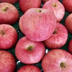 【ふるさと納税】津軽産 6月の有袋ふじ【理由あり】約10kg 【果物類・林檎・りんご・リンゴ】 お届け:2020年6月1日〜2020年6月30日