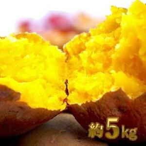 【ふるさと納税】五所川原市産 安納芋約5kg  【野菜・サツマイモ・さつまいも】 お届け:2020年10月20日〜