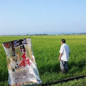 【ふるさと納税】【津軽産】まっしぐら上白米(8kg) 【お米】
