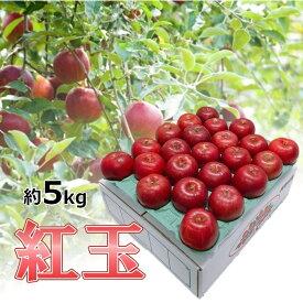 【ふるさと納税】りんご 青森産 約5kg 紅玉 【10月から順次発送】 【果物類・林檎・りんご・リンゴ】 お届け:2020年10月1日〜2020年12月25日