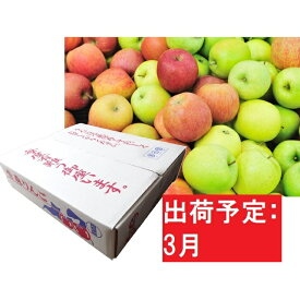 【ふるさと納税】【訳あり】 りんご 青森産 約5kg 【3月発送】品種おまかせ1種 【果物類・林檎・りんご・リンゴ・くだもの・約5kg・訳あり】 お届け:2021年3月1日〜2021年3月20日