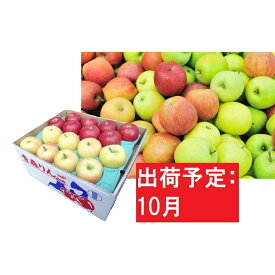 【ふるさと納税】【訳あり】 りんご 約10kg 青森産 【10月発送】品種おまかせ2種以上 【林檎・りんご・リンゴ・果物類・フルーツ・詰合せ】 お届け:2021年10月1日〜2021年10月31日