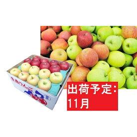 【ふるさと納税】【訳あり】 りんご 約10kg 青森産 【11月発送】品種おまかせ2種以上 【林檎・りんご・リンゴ・果物類・フルーツ・詰合せ】 お届け:2021年11月1日〜2021年11月30日