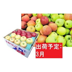 【ふるさと納税】【訳あり】 りんご 約10kg サンふじ確約 青森産 【3月発送】品種おまかせ2種以上 【林檎・りんご・リンゴ・果物類・フルーツ・詰合せ・約10kg・サンふじ・訳あり】 お届け:2021年3月1日〜2021年3月20日