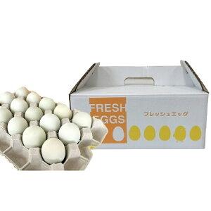 【ふるさと納税】あすなろ卵 20個 青森県産こだわり卵 青森県をイメージする青緑色の殻 【卵】