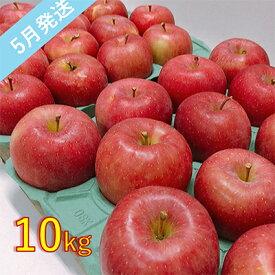 【ふるさと納税】【訳あり】 5月 りんご 10kg程度 青森産 有袋ふじ 【果物類・林檎・りんご・リンゴ・約10kg・訳あり】 お届け:2021年5月10日〜2021年5月31日