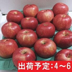 【ふるさと納税】【訳あり】 2〜6月 りんご 10kg程度 青森産 ジョナゴールド 【果物類・林檎・フルーツ・りんご・リンゴ・ジョナゴールド・10kg】 お届け:2021年2月10日〜2021年6月30日