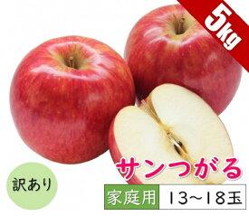 【ふるさと納税】【訳あり】 9月 りんご 5kg程度 サンつがる 【青森りんご・クール便】 【果物類・林檎・りんご・リンゴ・5kg・訳あり・サンつがる・つがる】 お届け:2021年9月1日〜2021年9月30日