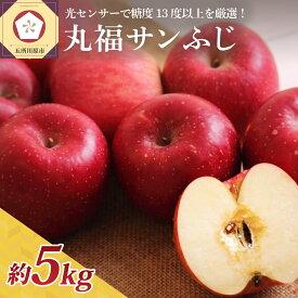 【ふるさと納税】※選べる 配送時期※ りんご 青森 5kg 丸福 サンふじ 光センサー 選果 糖度 13度以上