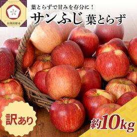 【ふるさと納税】※選べる 配送時期※ 訳あり りんご 10kg サンふじ 葉とらず 光センサー選果 糖度13度以上 12月 発送選択可能