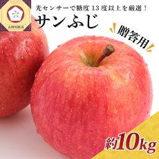【ふるさと納税】りんご約10kgサンふじ青森産糖度13度以上【12月発送】贈答用特選〜特秀【果物類・林檎・りんご・リンゴ】お届け:2021年12月1日〜2021年12月28日