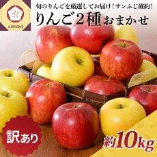 【ふるさと納税】【訳あり】りんご約10kgサンふじ確約青森産【12月発送】品種おまかせ2種以上【林檎・りんご・リンゴ・果物類・フルーツ・詰合せ】お届け:2021年12月1日〜2021年12月28日