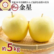 【ふるさと納税】【訳あり】りんご青森産約5kg金星【1〜2月発送】【果物類・林檎・りんご・リンゴ】お届け:2021年1月12日〜2021年2月28日