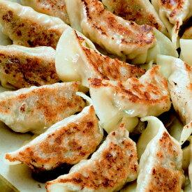 【ふるさと納税】タレ無しで食べる十和田の手作り餃子【1027372】