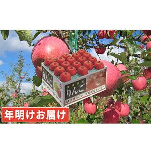 【ふるさと納税】年明け 糖度保証サンふじ約10kg 青森県平川市産 【果物類・林檎・りんご・リンゴ】 お届け:2020年1月8日〜2020年2月29日