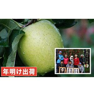 【ふるさと納税】年明け 親子三代最高位の王林約6kg家庭用 【果物類・林檎・りんご・リンゴ】 お届け:2020年1月10日〜2020年3月31日