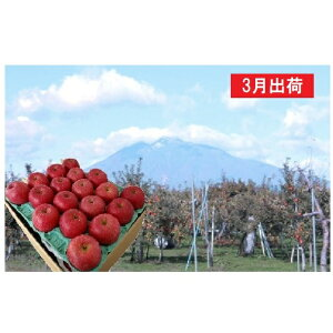 【ふるさと納税】3月  サンふじりんご特A約5kg 糖度13度以上平川市産(14〜20玉) 【果物類・林檎・りんご・リンゴ】 お届け:2020年3月1日〜2020年3月20日