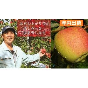 【ふるさと納税】年内 贈答用ぐんま名月約3kg(糖度証明書付き) 【果物類・林檎・りんご・リンゴ・青森県産】 お届け:2019年12月1日〜2019年12月28日