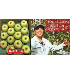 【ふるさと納税】年明け 家庭用ぐんま名月約5kg(糖度証明書付き) 【果物類・林檎・りんご・リンゴ・青森県産】 お届け:2020年1月10日〜2020年2月29日