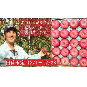【ふるさと納税】年内 家庭用サンふじ約5kg(糖度証明書付き) 【果物類・林檎・りんご・リンゴ・青森県産】 お届け:2019年12月1日〜2019年12月28日