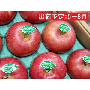 【ふるさと納税】5〜8月 親子三代最高位のシナノスイート約3kg(新鮮保持技術使用) 【果物類・林檎・りんご・リンゴ】 お届け:2020年5月11日〜2020年8月7日