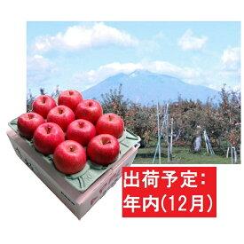 【ふるさと納税】12月 サンふじりんご「特A」約3kg 糖度13度以上 【森山商店・平川市産・青森りんご・12月】 【果物類・林檎・りんご・リンゴ】 お届け:2021年12月1日〜2021年12月30日