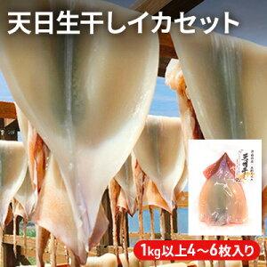 【ふるさと納税】青森県鰺ヶ沢町 生干しイカ 5枚セット※ ご入金確認後 3ヶ月以内の発送になります。 青森 イカ いか 国産 魚介 【魚貝類・イカ・魚貝類・イカ】