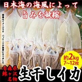 【ふるさと納税】青森県産一本釣りイカ使用 鰺ヶ沢名物 天日生干しイカセット(2Kg以上7枚〜12枚入り)※ ご入金確認後 3ヶ月以内の発送になります。 青森 イカ いか 国産 魚介 【魚貝類・イカ】