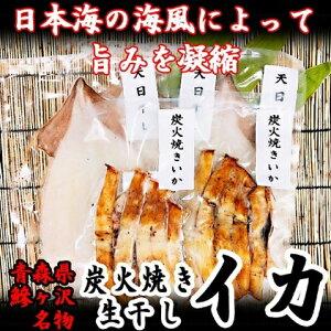 【ふるさと納税】青森県鰺ヶ沢町 生干しイカ 3枚、炭火焼きイカ 2パックセット ※お申込みから3ヶ月以内の発送になります。 青森 イカ いか 国産 魚介 【イカ・魚貝類・加工食品・惣菜