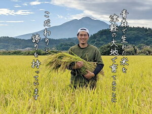 【ふるさと納税】【令和2年産】鰺ヶ沢町産 無洗米まっしぐら5kg(5kg×1) 【お米・米・無洗米】 お届け:10月下旬から順次配送予定