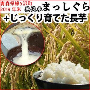 【ふるさと納税】青森県鰺ヶ沢町 2019年産米 まっしぐら〔無洗米〕(5Kg)とコクのある美味しい長芋(1/4本 約250g)のセット