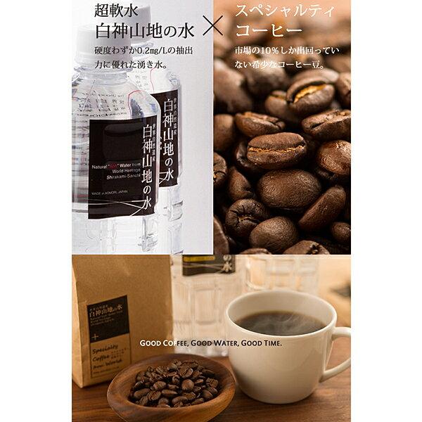 【ふるさと納税】白神山地の水・スペシャルティコーヒーのセット