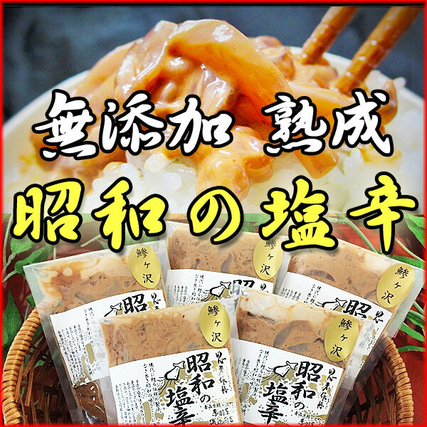 【ふるさと納税】青森県鰺ヶ沢町 無添加・熟成 酵母の力が活きた昭和の塩辛(イカ塩辛) エコパック100g×5袋セット ※お申込みから3〜6ヶ月以内の発送になります。