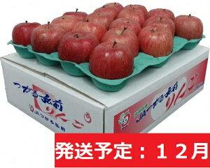 【ふるさと納税】サンふじ5kg贈答用【特A】(12月発送)