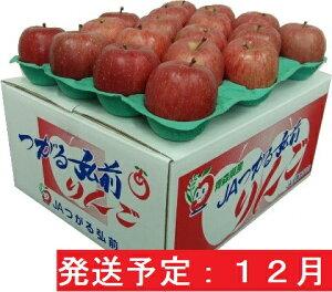 【ふるさと納税】サンふじ10kg贈答用【特A】(12月発送)