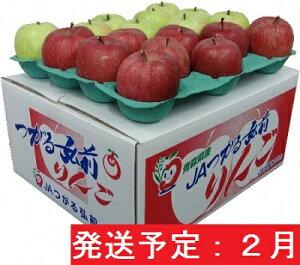 【ふるさと納税】サンふじ・王林10kg贈答用【特A・特選】(2月発送)
