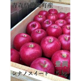 【ふるさと納税】青森県産りんご シナノスイート 家庭用 約5kg【1110660】