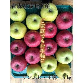 【ふるさと納税】青森県産りんご サンふじ・王林詰合せ 家庭用 約5kg【1110663】