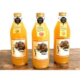 【ふるさと納税】りんごジュース大瓶 1L×3種 ギフト用【1128321】