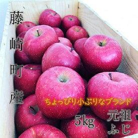 【ふるさと納税】青森県産りんご サンふじ 家庭用 小玉(約5kg)【1136100】