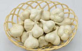 にんにく(1kg)栽培期間中農薬、化学肥料不使用【02402-0068】【ふるさと納税】