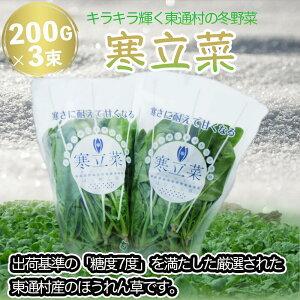 【ふるさと納税】寒立菜(期間限定)200g×3束