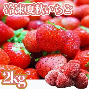 【ふるさと納税】冷凍夏秋いちご(2kg)