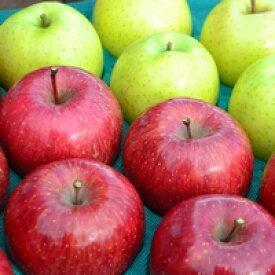 【ふるさと納税】先行受付[りんご]「サンふじ」&「王林」 計14〜20玉・約5kg【大人気の2色!】【2021年11月下旬〜12月下旬にかけて申込順に発送します】青森りんご 三戸産 林檎 フルーツ 果物 農家直送 産地直送