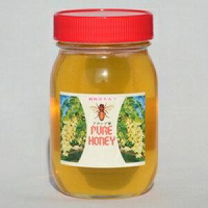【ふるさと納税】国産はちみつ アカシア蜂蜜600g