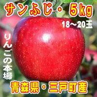 【ふるさと納税】三戸りんご「サンふじ」18〜20玉 約5kg