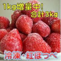 【ふるさと納税】【1kg増量中!】農園直送!冷凍いちご「紅ほっぺ」たっぷり3kg!